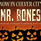 mr-bones